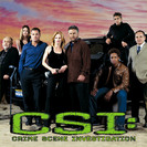 CSI: Crime Scene Investigation: The Unusual Suspect